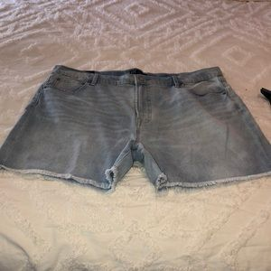Gap 5in Relaxed Short NWT